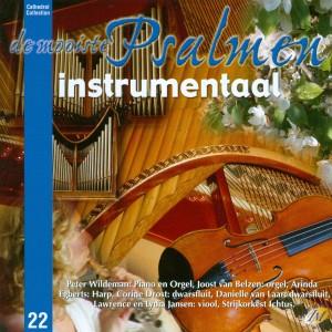 Instrumentaal Psalmen (deel 2), CD niet leverbaar, wel via I-tunes
